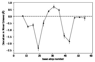 minor groove of dna